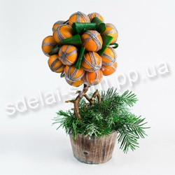 Tangerine tree do it yourself