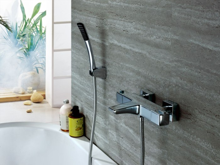 How to choose a Hansgrohe thermostatic mixer